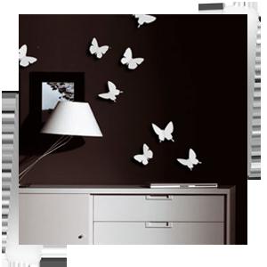 Бабочки белые
