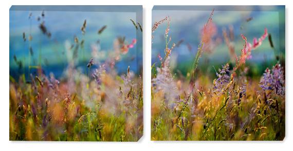 Картина двойная трава, картина диптих ...: abpstudio.ru/magneticboards/product/view/17/534
